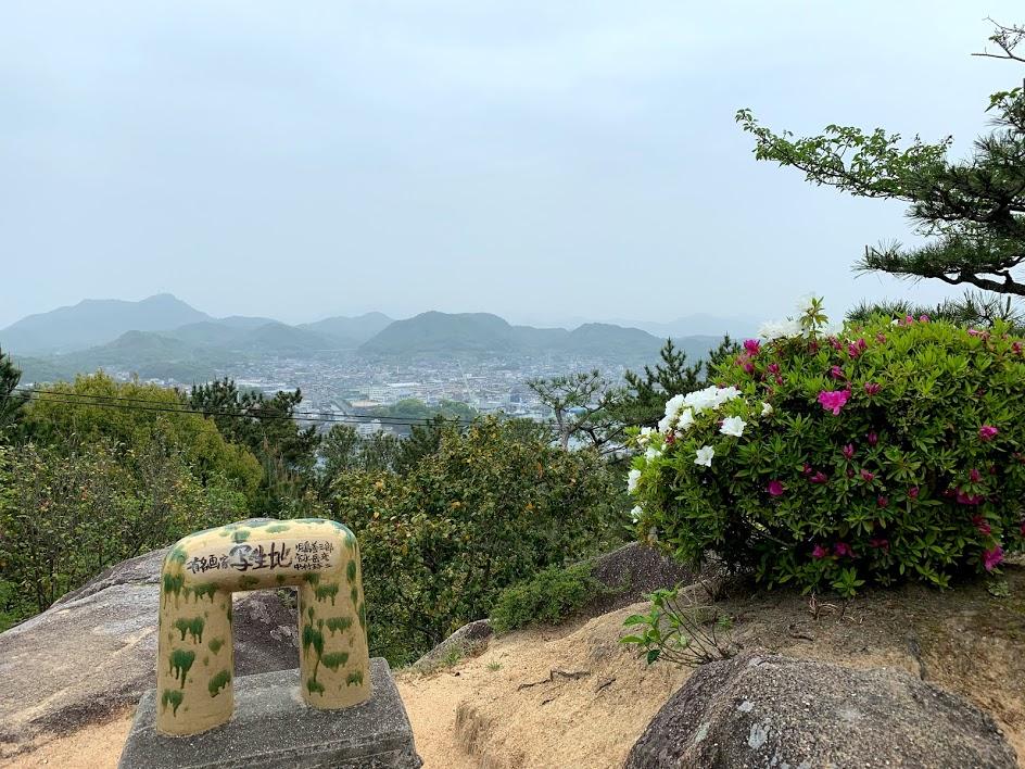 頂上付近からの景色