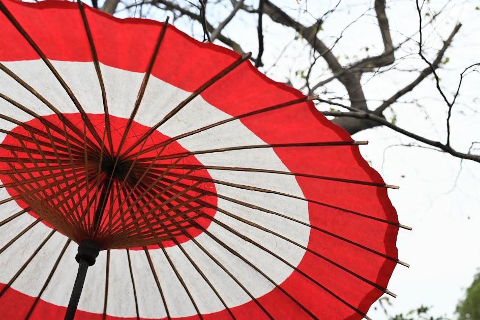 上野公園のぼたん苑